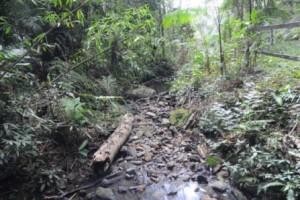 Manhumirim: pior seca em 70 anos. Falta de água prejudica a cidade