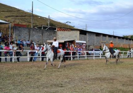 Manhuaçu: Exposição Mangalarga marchador movimenta os amantes de equinos