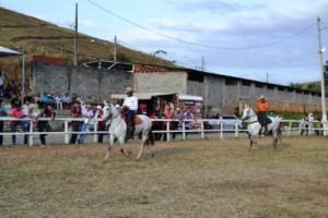 Manhuaçu: 2ª exposição de Mangalarga acontece no Parque de Exposições