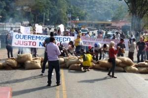 Manhuaçu: Governo diz que em 10 dias terá solução para o preço do café