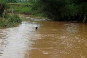 Bom Jesus: encontrado corpo de criança vítima de afogamento