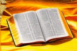 Evangelho do dia (Jo 20,19-31)