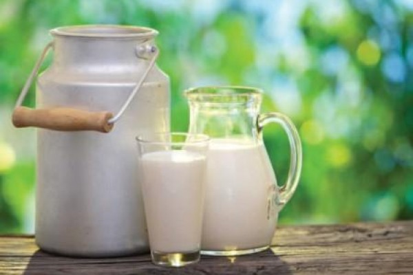 leite2.jpg