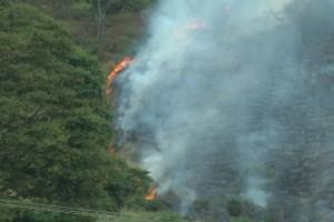 Caratinga: incêndio na zona rural mobiliza bombeiros de Manhuaçu