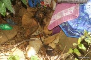 Carangola: corpo de mulher é encontrado em cachoeira da cidade. Em decomposição