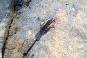 """Manhumirim: adolescente é morto a facadas. """"Rixa"""" antiga entre os envolvidos"""