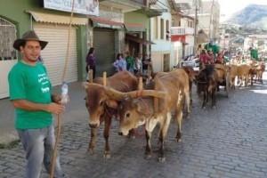Divino: 7 de setembro com desfile de carros de boi