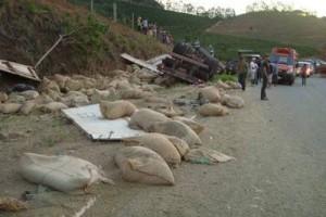 Lajinha: Carreta de Manhuaçu capota na MG 108. Estava carregada com 550 sacas de café