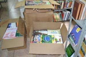 Manhuaçu: Biblioteca pública municipal recebe novos livros