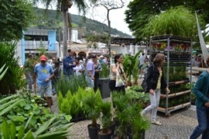 Manhuaçu: Exposição de flores traz beleza e colorido ao centro da cidade