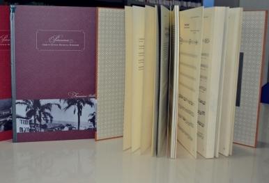 biblioteca-manhuacu-acervo-2