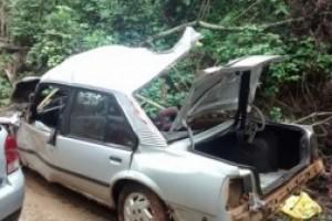 Carangola: Dois moradores da cidade morrem na BR 101
