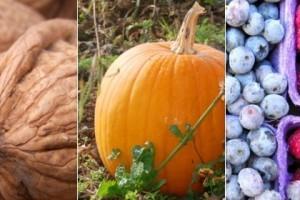Vida e Saúde: Nutrientes ajudam na prevenção de gripe e resfriados