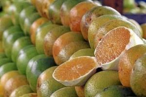 Vida e Saúde: É melhor comer a laranja do que tomar o suco da fruta?