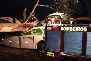 Manhuaçu: Identificados passageiros que morreram na BR 116. Queda de árvore