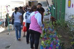 Manhuaçu: CAPS AD distribui mudas para anunciar a primavera