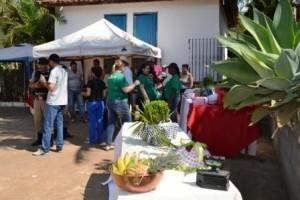 Manhuaçu: Dia de campo reúne produtores no Córrego das Nascentes