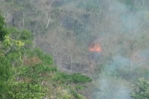 Caratinga: Fogo ameaça reserva Feliciano Abdala