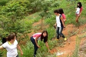 Manhuaçu: Estudantes plantam 2500 mudas de árvore
