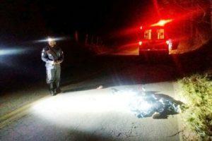 Ciclista morre atropelado na MG 111