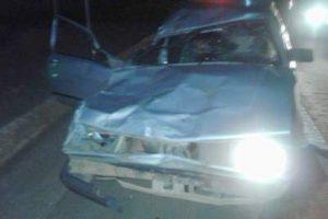 Animal na pista causa acidente em Manhuaçu
