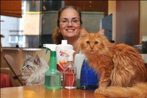Vida e Saúde: redobre os cuidados com animais em casa