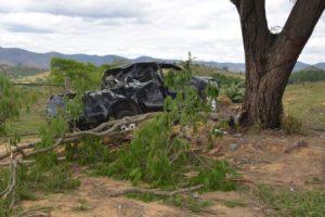 Taparuba: Picape sai da estrada e só para em árvore