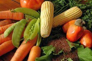 Vida e Saúde: Dieta rica em proteína é prejudicial à mulher