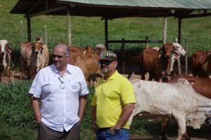 Fazendas do BASA recebem visita de parceiro venezuelano