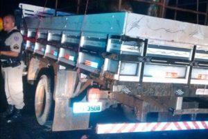 PM recupera caminhão e gado roubado