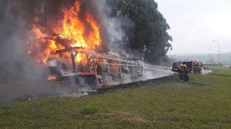 Incendio Cegonha (18)