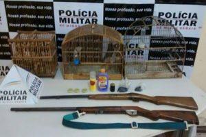 Prisões, armas, munições e pássaros apreendidos pela PM Ambiental