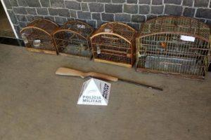 PM apreende arma de fogo e pássaros em Santana do Manhuaçu