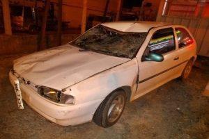 Novamente animal na pista causa acidente em Manhuaçu