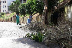 Manhuaçu: Limpeza e poda de árvores é feita no Bom Pastor