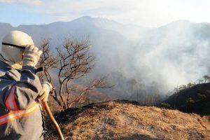 Brigadas: Temporada de incêndios florestais abre vagas de emprego em MG