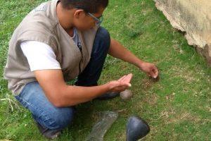Vigilância Ambiental inicia distribuição da semente de Crotalária