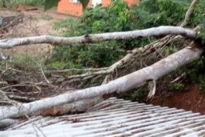 Chuva forte e ventos causam prejuízos em Manhuaçu