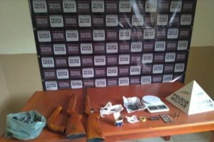 Oito armas de fogo apreendidas em operação da PM Mineira e Capixaba