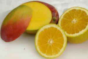 Consumir frutas cítricas diariamente ajuda a reduzir o risco de desenvolver a endometriose
