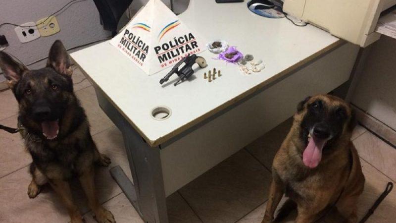 PM utiliza mais uma vez os cães da ROCCA e apreende drogas e arma de fogo