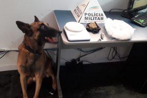 Manhuaçu: PM prende autor de tráfico de drogas e apreende drogas com ajuda do cão farejador