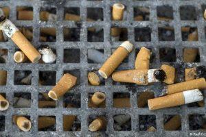Tabagismo causa enorme dano ao meio ambiente, alerta OMS