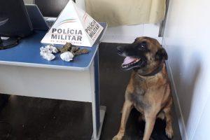 Manhuaçu: Drogas apreendidas na Matinha