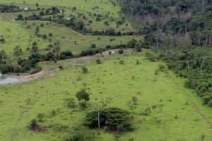 Começa o prazo para entrega da declaração de propriedade rural