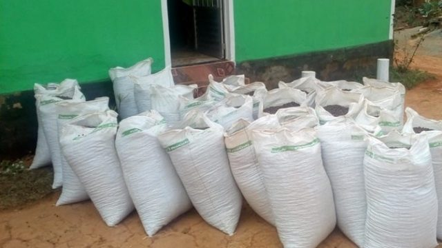 Santa Margarida: PM de prende dois e recupera sacas de café furtadas