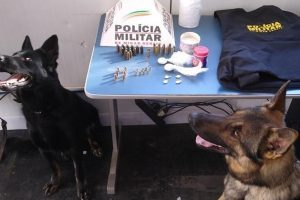 Cães de faro localizam drogas e munições no São Francisco de Assis