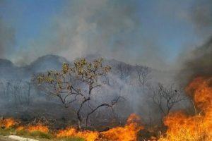 Mudança climática ameaça produção de alimentos, alerta ONU