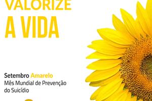 Girassol é símbolo de campanha para alertar sobre depressão