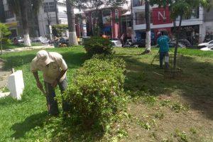 SAMAL e Agricultura iniciam trabalhos de capina, limpeza e revitalização de praças e jardins